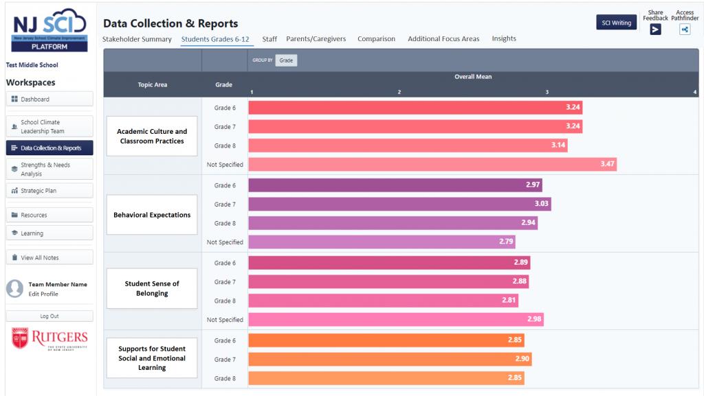 Data Report Disaggregated Item Page on NJ SCI Platform